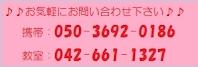 電話:050-3692-0186